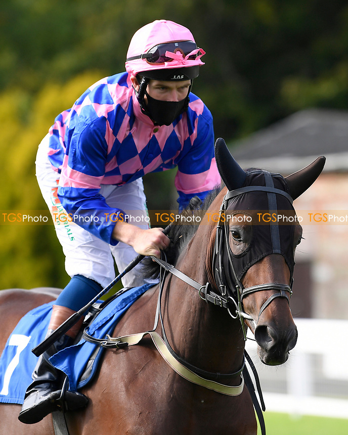 Rainbow Sign ridden by Finlay Marsh goes down to the start of The Radcliffe & Co Novice Median Auction Stakes (Div 2) during Horse Racing at Salisbury Racecourse on 11th September 2020