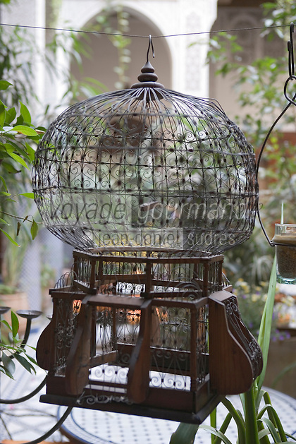 Afrique/Afrique du Nord/Maroc/Fèz: Riad Al- Bartal détail cage a oiseau dans le patio