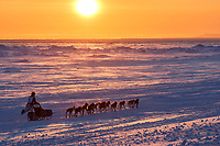 Matt Failor runs on the trail on the Bering Sea at sunset heading toward the finish at Nome on Wednesday March 14th during the 2018 Iditarod Sled Dog Race.  <br /> <br /> Photo by Jeff Schultz/SchultzPhoto.com  (C) 2018  ALL RIGHTS RESERVED
