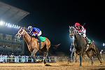 RIYADH,SAUDI ARABIA-FEB 29: Maximum Security #7,ridden by Luis Saez,wins the Saudi Cup at King Abdulaziz Racetrack on February 29,2020 in Riyadh,Saudi Arabia. Kaz Ishida/Eclipse Sportswire/CSM