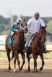 September 1, 2014:  Tightend Touchdown, Kendrick Carmouche up, joins the post parade for the grade 3 Turf Monster Handicap at Parx Racing in Bensalem, PA.  ©Joan Fairman Kanes/ESW/CSM