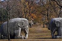 Asie/Chine/Jiangsu/Nankin: La voie Sacrée - Statues colossales représentant des chameaux, conduisant au mausolée de l'Empereur<br /> PHOTO D'ARCHIVES // ARCHIVAL IMAGES<br /> CHINE 1990