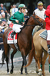 June 5 2010. Gio Ponti in the Woodford Reserve Manhattan Handicap at Belmont Park in Elmont, NY...