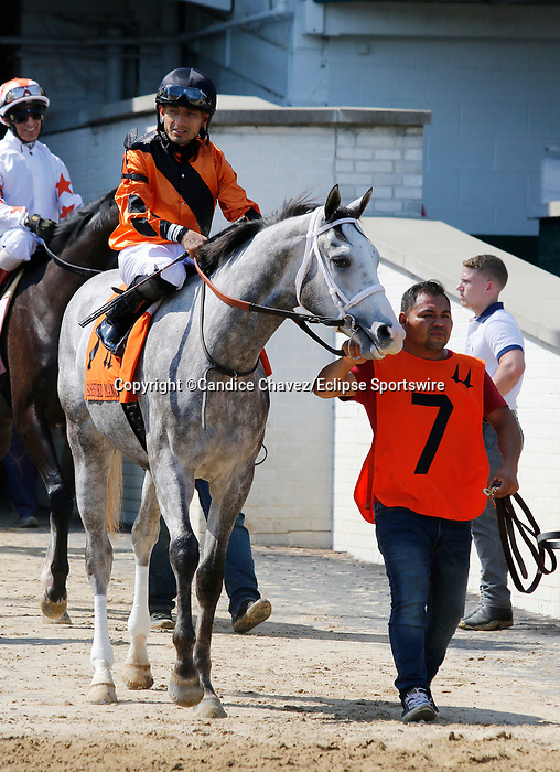 June 26,, 2021: #7 Whistlewhileyoumow in the Bashford Manor at Churchill Downs.  Louisville, KY on June 26, 2021.  Candice Chavez/ESW/CSM