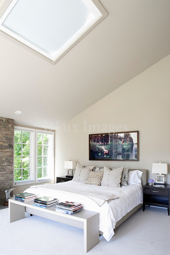 contemporary bedroom with skylight