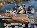 Saddlers Cove Dock On Sheepscot River