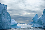 Icebergs on the Eastern Greenland current.