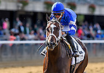 September 26, 2015 :  Wedding Toast, ridden by Jose Lezcano, wins the Grade I Beldame Stakes on Turf Classic Day at Belmont Park in Elmont, MD. Scott Serio/ESW/CSM