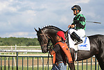 September 1, 2014: Smarty Jones Stakes contender Just Call Kenny, Paco Lopez up, head to the post parade. Protonico, Joe Bravo up, wins the grade 3 Smarty Jones Stakes at Parx Racing in Bensalem, PA. Trainer is Todd Pletcher. Owner is International Equities Holding, Inc. ©Joan Fairman Kanes/ESW/CSM