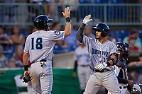 Hudson Valley Renegades Luis Trevino (17) high fives Alexander Hill (18) after hitting a home run during a NY-Penn League game against the Mahoning Valley Scrappers on July 15, 2019 at Eastwood Field in Niles, Ohio.  Mahoning Valley defeated Hudson Valley 6-5.  (Mike Janes/Four Seam Images)