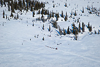 Aerial of Aliy Zirkle as she runs on the trail to Shaktoolik during Iditarod 2009