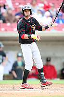 May 15, 2010: Luis Mateo of the Quad City River Bandits at Elfstrom Stadium in Geneva, IL. The River Bandits are the Class A affiliate of the St. Louis Cardinals. Photo by: Chris Proctor/Four Seam Images