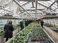 Gewächshaus, Bodensee - Insel Mainau, Baden-Württemberg, Deutschland, Europa<br /> Greenhouse, Isle of Mainau, Lake Constance, Baden-Württemberg, Germany, Europe