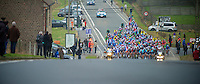 3 Days of West-Flanders, .day 2: Brugge-Kortrijk/Bellegem.approaching peloton.
