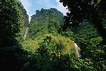 trafalgar falls<br /> Trafalgar falls dans le parc national de Morne Trois Pitons. Ile de la Dominique.