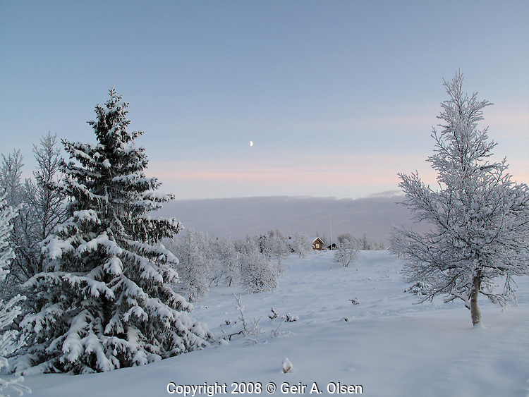 Venabygdsfjell, early winter, soft light