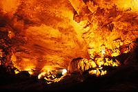 Puerto Rico, Rio Camuy Cave Park