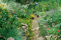 Exhuberant multi-colored flower garden in full bloom with plants to attract the birds and butterflies and crossed by and hand laid stone path