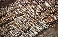 """A maior operaÁ""""o feita atÈ ent""""o na AmazÙnia resultou na apreenÁ""""o de 9 mil m≥de mogno. O Ibama encontrou esta grande quantidade de madeira escondida no meio da floresta. A aÁ""""o durou mais de uma semana contou com o apoio do Greenpeace e 6 aeronaves.<br /> Uruar·-Par·-Brasil30/10/2001<br /> ©Foto: Paulo Santos/Interfoto <br /> Negativo N∫ 8083"""