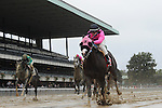 Appealing Tale (no. 1) ridden by Joe Talamo and trained by Peter Miller, wins the grade 2 Kelso for older mares on October 3, 2015 at Belmont Park in Elmont (Bob Mayberger/Eclipse Sportswire)