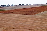Barren fields outside the winery. Henrque HM Uva, Herdade da Mingorra, Alentejo, Portugal