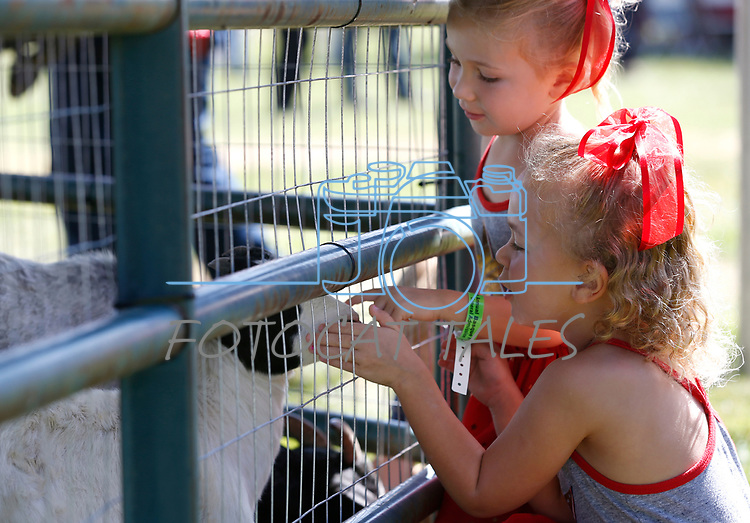 Abigail DiLorento, 5, and her sister Madison, 3, pet goats at the 4th annual Basque Fry in Gardnerville, Nev., on Saturday, Aug. 25, 2018. Hosted by the Morning in Nevada PAC, the event is a fundraiser for conservative candidates and issues and includes traditional Basque dishes like deep-fried lamb testicles. (Cathleen Allison/Las Vegas Review Journal)