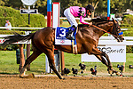 SARATOGA SPRINGS, NEW YORK - AUG 26:  West Coast #3, ridden by Mike Smith , wins the Travers Stake at  Saratoga Race Course on August 26, 2017 in Saratoga Springs, New York.(Photo by Sue Kawczynski/Eclipse Sportswire/Getty Images)
