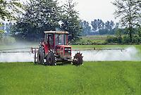 - cultivation of the rice in province of Novara, chemical herbicide distribution ....- coltivazione del riso in provincia di Novara, distribuzione del diserbante chimico