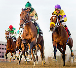 Samraat (left), ridden Jose Ortiz, leads Uncle Sigh (pirple cap) and the rest of the field past the stands the first time en route to winning the Withers Stakes at Aqueduct Race Track in Ozone Park, New York on February 1, 2014.