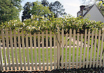 Picket fence with house Colonial Williamsburg Virginia, Williamsburg Virginia 1699 to 1780 capital Commonwealth of Virginia molding democracy for the United States of America.  Williamsburg was the center of government, education and culture in the Colony of Virginia, george Washington, Thomas Jefferson, Patrick Henry, James Monroe, Hames Madison, George Wythe, Peyton Randolph and others molded democracy for the United States, Picket fence with house,