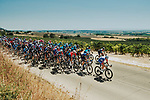 The peloton during Stage 2 of La Vuelta d'Espana 2021, running 166.7km from Caleruega. VIII Centenario de Santo Domingo de Guzmán to Burgos. Gamonal, Spain. 15th August 2021.    <br /> Picture: Cxcling   Cyclefile<br /> <br /> All photos usage must carry mandatory copyright credit (© Cyclefile   Cxcling)