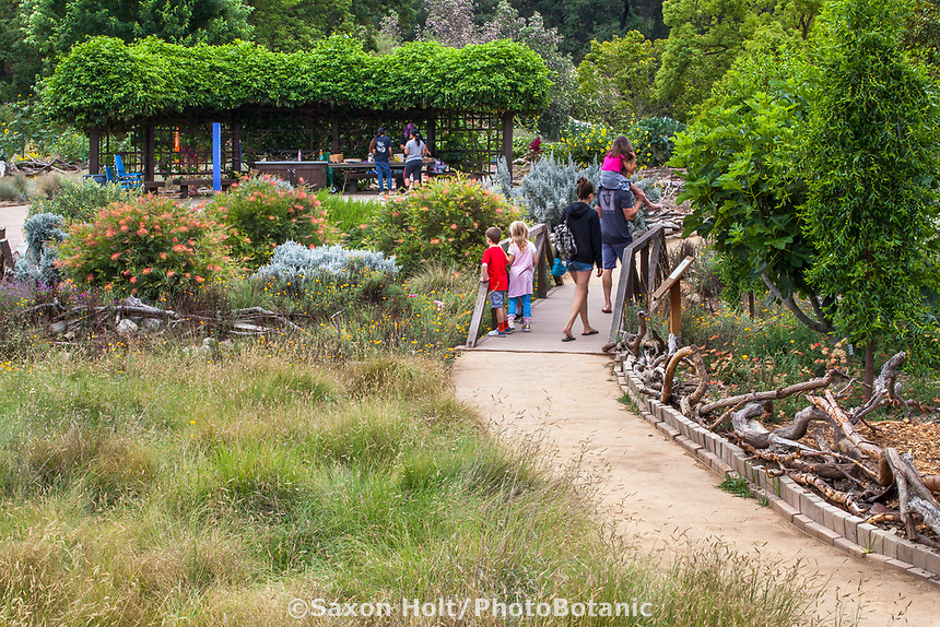 Path through meadows at Crescent Farm, sustainable demonstation garden; Los Angeles County Arboretum and Botanic Garden