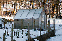 Greenhouse and garden in the snow, Whitewell, Lancashire.