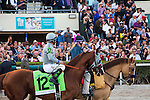 HALLANDALE BEACH, FL - JANUARY 28: California Chrome and jockey Victor Espinoza on look towards their fans while on post parade for the Pegasus World Cup Day at Gulfstream Park. (Photo by Arron Haggart/Eclipse Sportswire/Getty Images