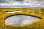 Wellfleet Bay Audubon Sanctuary in Wellfleet, Cape Cod, MA, USA