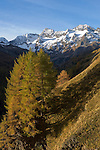 Italy, South Tyrol, Alto Adige, Val Passiria, autumn landscape at Natural Park Texel Group, near Timmelsjoch High Alpine Road, Hochfirst, Granatenkogel and Koenigskogel mountains