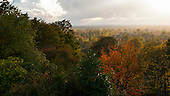 Richmond Park, England. Bright view over Surrey, autumn; changing seasons.
