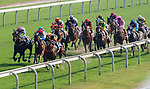 Horse Premiere #13 ridden by Joao Moreira competes during the race 7 of HKJC Horse Racing 2017-18 at the Sha Tin Racecourse on 16 September 2017 in Hong Kong, China. Photo by Victor Fraile / Power Sport Images