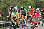 The peloton in action during the 99th edition of Milan-Turin 2018, running 200km from Magenta Milan to Superga Basilica Turin, Italy. 10th October 2018.<br /> Picture: Eoin Clarke | Cyclefile<br /> <br /> <br /> All photos usage must carry mandatory copyright credit (© Cyclefile | Eoin Clarke)