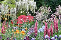 Mixed flowers and bench. Schreiner's Iris Garden. Salem. Oregon
