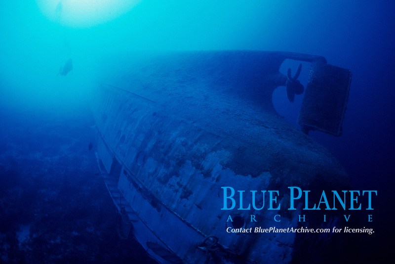 diver explores wreck of the Anne, upside down partially hanging over wall, 95 foot minimum depth, stern rail at 150 feet, New Providence, Bahamas, Caribbean Sea, Atlantic Ocean
