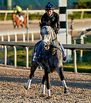 January 21, 2021: Knicks Go exercises as horses prepare for the 2021 Pegasus World Cup Invitational at Gulfstream Park in Hallandale Beach, Florida. Scott Serio/Eclipse Sportswire/CSM