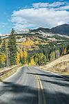 US, CO, Gunnison NF, Autumn Road