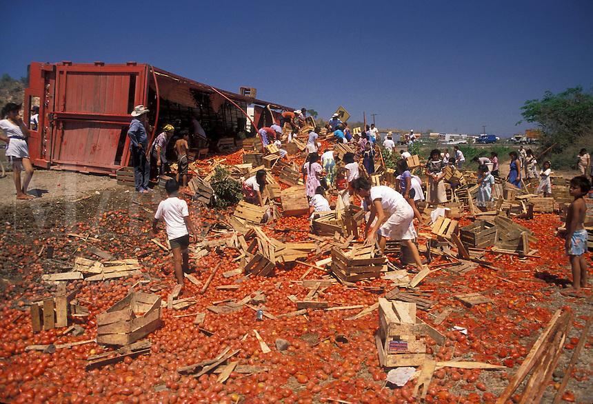 AJ1865, accident, disaster, Mexico, People picking up tomatoes after an accident with an overturned tomato truck.