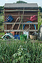 An allotment tool shed with watering cans, canes and plant supports.