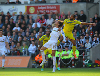 Saturday, 06 October 2012<br /> Pictured: of Swansea of Reading<br /> Re: Barclays Premier League, Swansea City FC v Reading at the Liberty Stadium, south Wales.<br /> Michu against Adrian Mariappa
