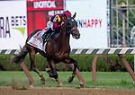 SARATOGA SPRINGS, NY - AUGUST 25: Catholic Boy  #11, ridden by jockey Javier Castellano, wins the Travers Stakes on Travers Stakes Day at Saratoga Race Course on August 25, 2018 in Saratoga Springs, New York. (Photo by Scott Serio/Eclipse Sportswire/Getty Images)