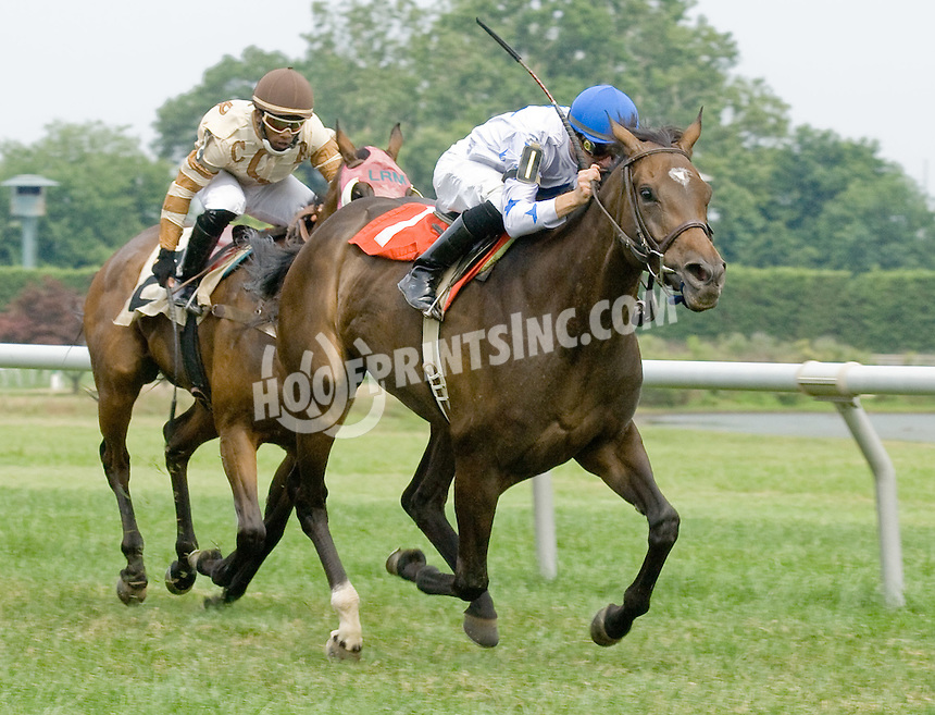 Nefertiti winning at Delaware Park on 7/4/11