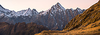 Dawn, twilight on Mount Copland, Westland Tai Poutini National Park, UNESCO World Heritage Area, West Coast, New Zealand, NZ
