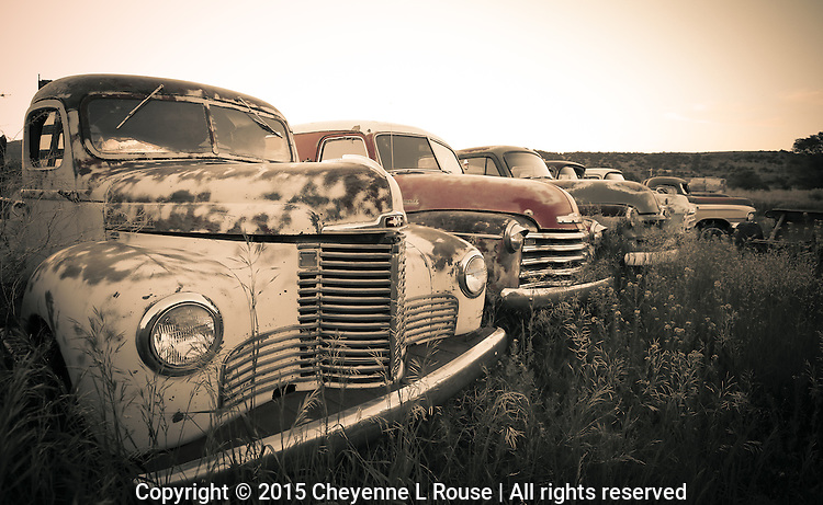 Field of Dreams - New Mexico<br />